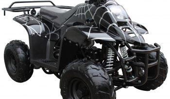 110 cc Kids ATV Quad
